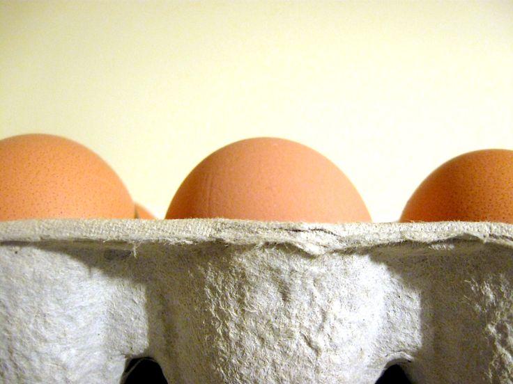 eggstri-doshic