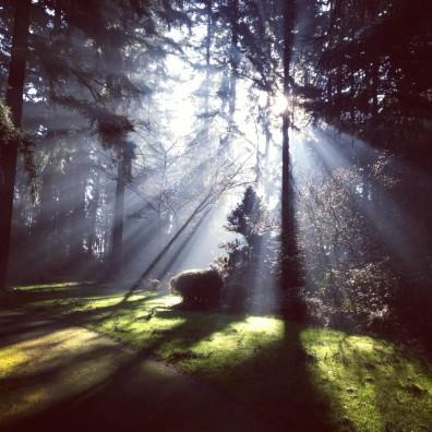 3 Popular Meditations For Seasonal Affected Disorder (SAD)