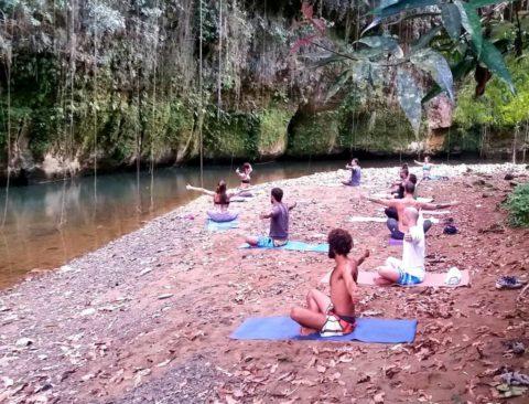 Yoga + Ayurveda Puerto RIco