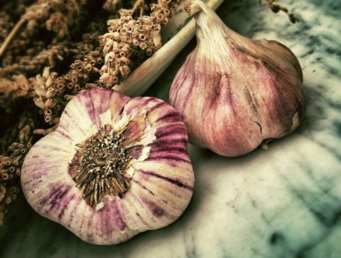 Top 5 Foods To Avoid This Summer Garlic